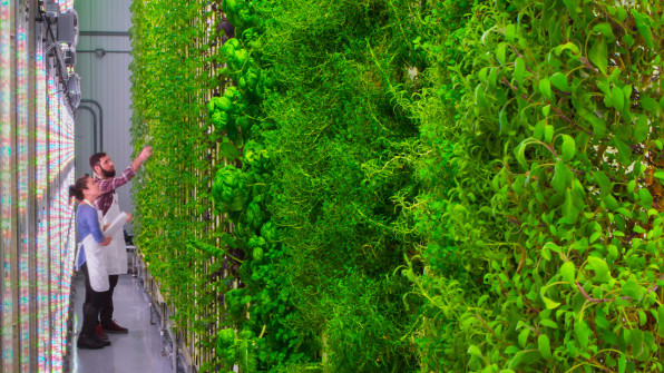 May Eco-news Roundup - Vertical Farming
